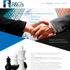 R&G´s Consulting Services